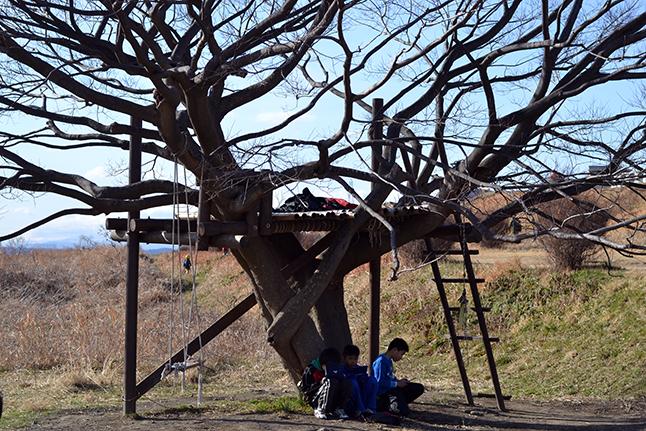 地域のパパたちがつくったツリーハウス