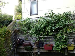 庭がなくても、通りに面して景観がつくれればOK