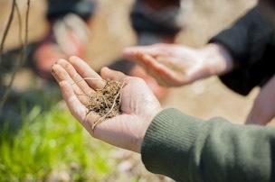 直射日光や冷たい空気にさらされないように草で覆って微生物を守る。草のない裸の畑では、微生物は増えにくい