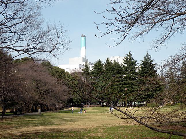 砧公園から見える、世田谷清掃工場の煙突