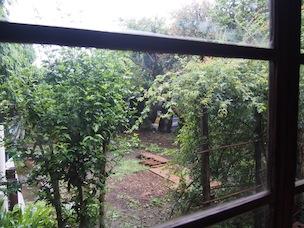 室内から望む庭や緑に心が和みます