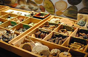 素材はすべて自然の物。木や石、陶器のボタンはファッションのワンポイントにもなりそう